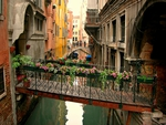 The canals of Venice.