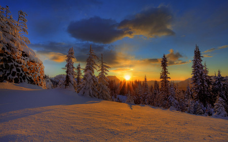 Beautiful Winter Sunset - skies, winter, sunset, forest, mountain, nature, trees, sunrise, sun, summit