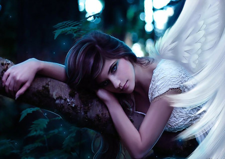 Beautiful Angel - wings, hd, cg, white, face, abstract, tree, eyes, cute, sweet, angel, forest, model, woman, alone, hair, feather, dreamer, gorgeous, nice, lips, wing, beauty, beautiful, lovely, fantasy, girl, pretty, people