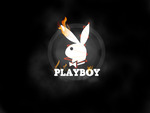 Flaming Playboy
