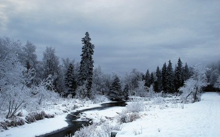 Winter Time - stream, winter, time, snow