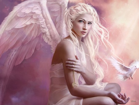 Lovely Angel / Liebreizender Engel - wings, dove, beautiful, angel, pink, peace, light, bird, angel with dove, quietude, love, peaceful, colours, fantasy, blonde
