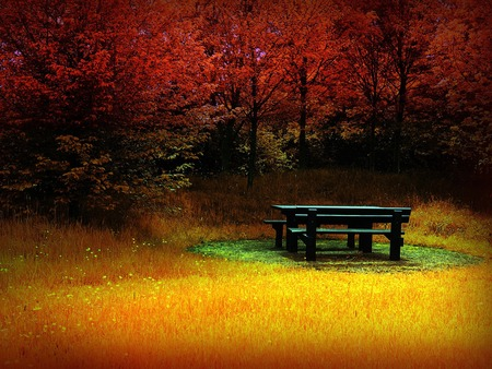 Fire autumn / Feuer Herbst - wds, widescreen, orange, red, forest, bench, autumn, yellow