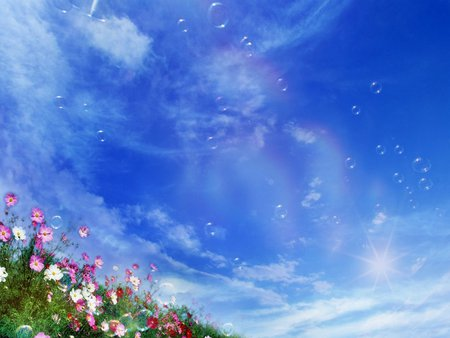 Beautiful Flowers - flowers, beautiful, sky, colors, nice, clouds, grass, nature, fantasy