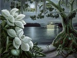 MAGNOLIA MOONLIGHT PICTURE