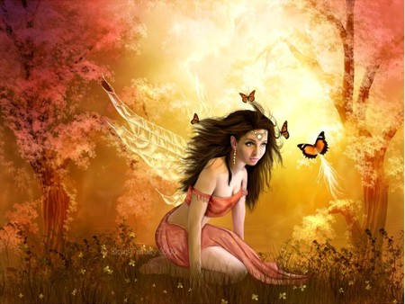 In the light of the sun - fae, colorful, fairy, butterflys, pretty, forest, fantasy