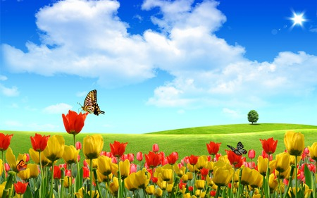 Beautiful Field - flowers, spring, beautiful, blue, tree, butterfly, landscape, butterflys, grass, tulip, green, summer, field, sky, colors, tulips, clouds, sunny, nature, sun, fields