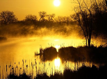 yellow sunrise sunsets amp nature background wallpapers on