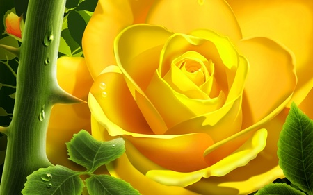 Yellow Rose (WDS) - rose, cool, wds, digital flowers, yellow, flower, 3d and cg, widescreen, 3d, its so cool, digital flower, digitalflower