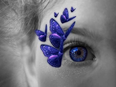 BUTTERFLY KISSES - face, blue, butterflies, eye