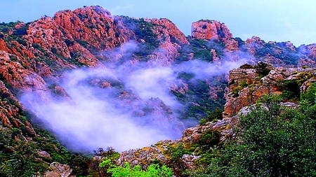 Amazing Mist Between Mountain - amazing, colorful, mist, mountain, forest, beauty