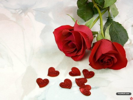 roses and hearts  flowers  nature background wallpapers on, Beautiful flower