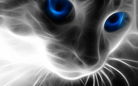 digital-cat - cool, animals, digital art, cats, abstract, blue, art, animal, digital, eyes, cat, 3d, hot, cg