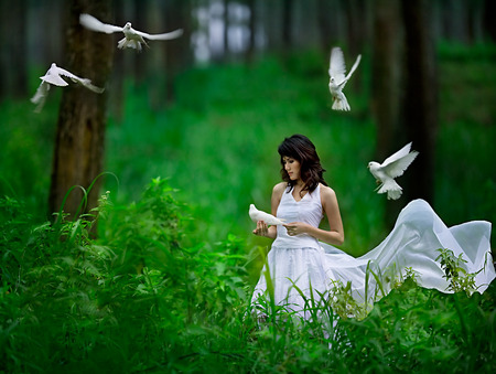 Heaven isnt enough - green, wings, dove, beautiful, trees, female, girl, woman, bird, white, forest, dress