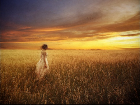 Catcher in the rye - hot, nature, field, scene