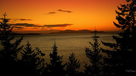 Sunset Over Water - island, trees, widescreen, sunset, washington, framed, firefox persona