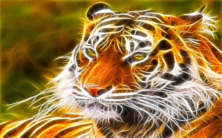 Mr cool 3d and cg abstract background wallpapers on - Cool animal wallpaper light ...