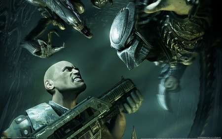 Aliens vs predator - aliens, human, predator, weapon, aliens vs predator, fight