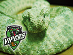 Alabama Vipers
