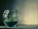 City in Fishbowl