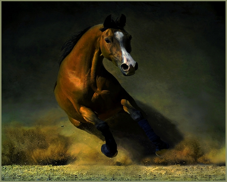THE END OF THE BATTLE - stallion, strong, horse, run, brown, speed