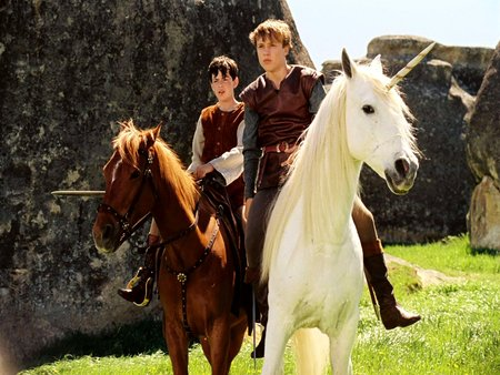 Narnia  - sdventure, battles, unicorns, animal, magical, narnia, action, epic, family, good vs evil