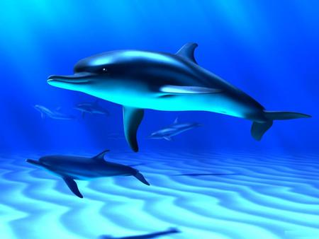 3D-Dolphins-Close - animals, fish, abstract, art, dolphins, marine animals, 3d, sea, ocean, cg
