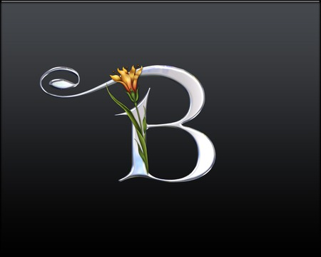 LETTER B - 3D and CG & Abstract Background Wallpapers on ...
