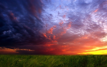 Sunset - green, beautiful, colorful, field, sky, colors, clouds, storm, sunset, grass, nature