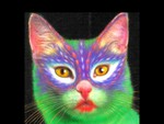 Painted Cat