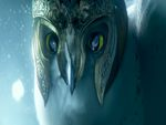 Legend of the Guardians: The Owls of Ga'Hoole (2)