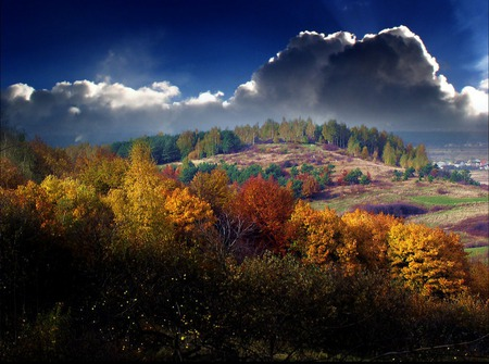 Radiance of a Thousand Colors - scenery, amazing, orange, blue, numbers, autumn, grove, yellow, radiance, gray, seasons, purple, nice, roots, awesome, violet, picture, scarlet, land, green, scarlat, trees, leaf, scenario, paysage, wallpaper, clouds, fields, fullscreen, sunlights, hills, cenario, cool, morning, beautiful, forests, downhills, landscape, grass, red, day, declive, woods, scene, cena, grasslands, paisagem paisage, colorful, black, sky, colors, brown, panorama, branches, leaves, dawn, image, trunks, nature, natural, sun, thousand, background