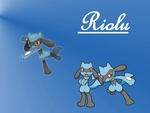 Adorable Riolu