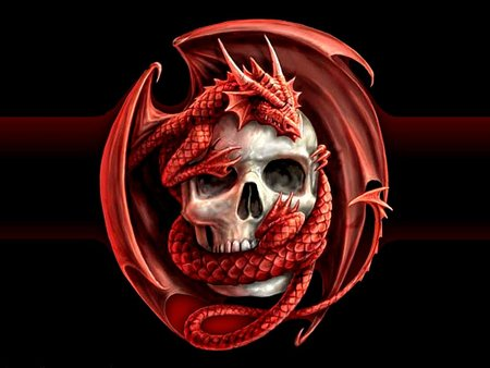 Dragonic Evil Skull - evil, black, scary, red, skull, dragon