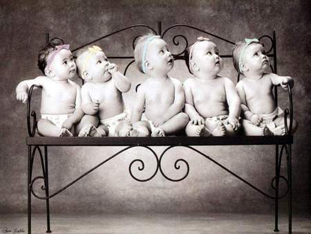 5 CUTE BABIES POSING FOR CAMERA - Other & People Background ...