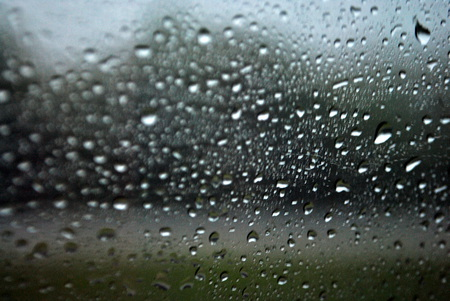 Rainy Day - rain, water, window, trees, drops, day, missouri, car