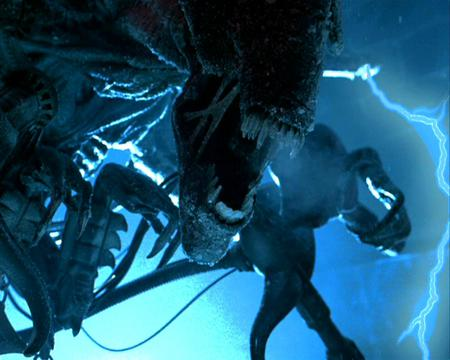 Alien Queen - AVP - movie, alien, creature, queen, avp, scifi