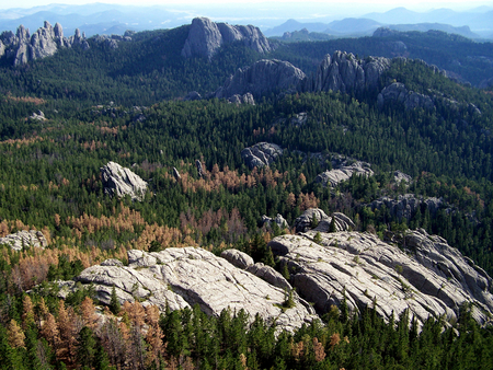 Black Hills, South Dakota - mountains, black hills, nature, forests