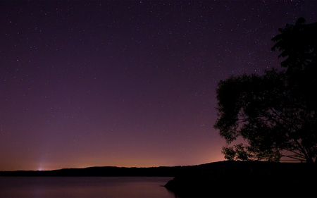 Moraine Nights - lake, sky, tree, hills, night, dusk, stars