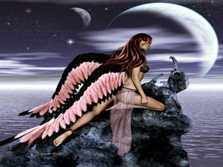 PINK & BLACK ANGEL WINGS - water, wings, angel, black, pink, sky, moons, stars