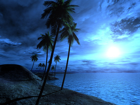 3D PlamTree Beach - Beaches & Nature Background Wallpapers on ...