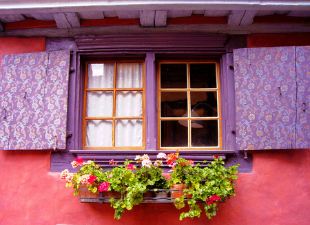 Flowered window - building, window, flowers, house