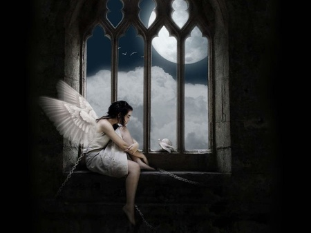 Angel in Prison - dove, angel, caught, angels, shackle, dark, iron shackle, captured, prison, dark art