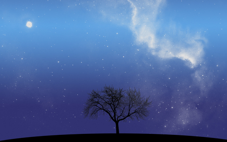 Alone - silhouette, sky, universe, galaxy, milky way, tree, night, stars