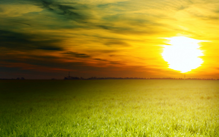 Peaceful Sunset - sunsets, beautiful, grass, sun, nature, peaceful