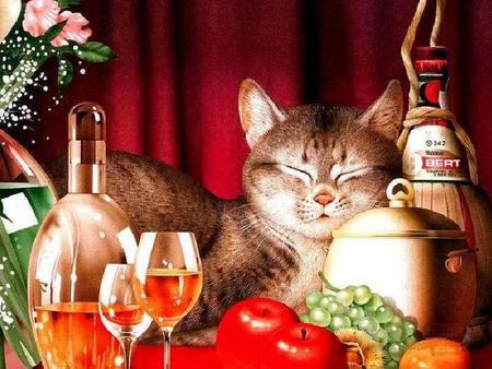 Contentment - fruit, flowers, bottle, wine, cat, glasses, pot