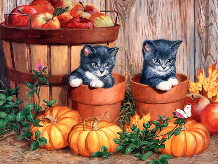 Halloween Kittens - feline, pets, halloween, black, cats, painting, apples basket, flowerpots, art, wide screen, butterfly, nice, fence, artwork, kittens, pumpkins