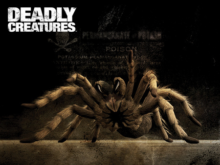 Deadly Creatures - spider, tarantula, deadly, game, creatures