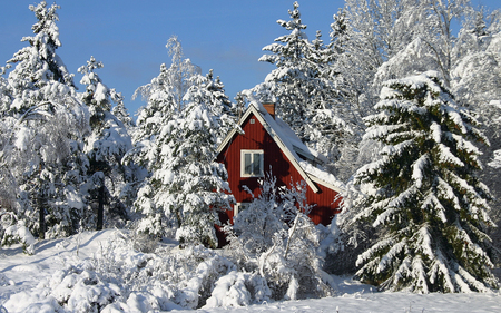 Winter - splendor, red house, winter time, beautiful, trees, sky, view, cottage, landscape, snow, white, house, red, nature, peaceful, winter