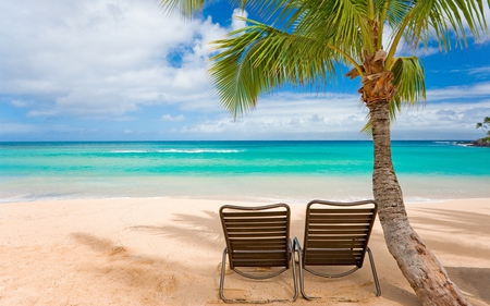 Summer - tropical, sun chairs, beautiful, chairs, reflection, blue, beach chairs, tree, view, beach, water, shadows, palm tree, scene, chairs relaxe, summer, palm, trees, lounges, sky, waves, chair, sand, clouds, coconuts, nature, sea, peaceful, ocean